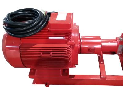 Electric motor of pump set